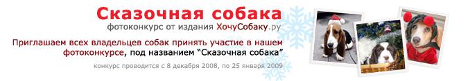 http://www.hochusobaku.ru/img/konkurs_1.jpg