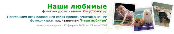 http://www.hochusobaku.ru/img/konkurs_2.jpg
