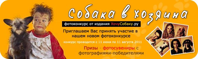 http://www.hochusobaku.ru/img/konkurs_7.jpg