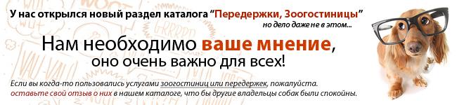 [img]http://www.hochusobaku.ru/img/mnenie.jpg[/img]