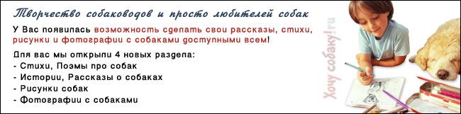 http://www.hochusobaku.ru/img/tvorchestvo.jpg
