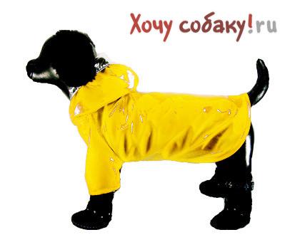 Желтое  для собаки